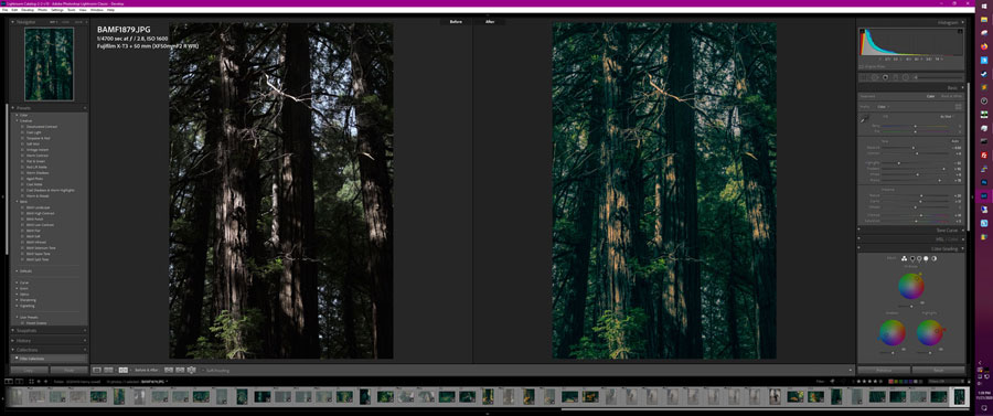 forest green lightroom preset: color grading